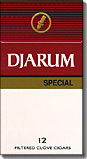 DJARUM SPECIAL BOX FILTERED CLOVE CIGARS